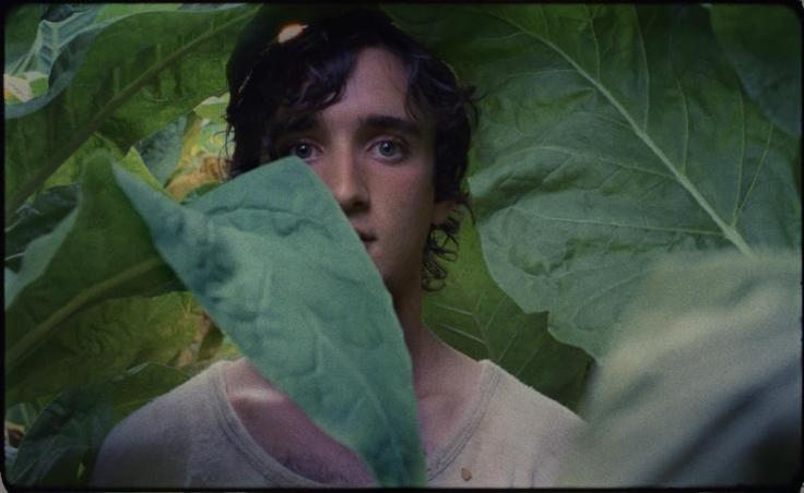 happy_as_lazzaro_03